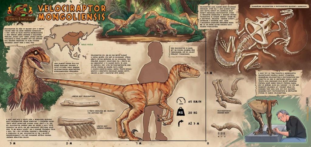 Velociraptor screen